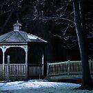 The Night Bridge by actionshot