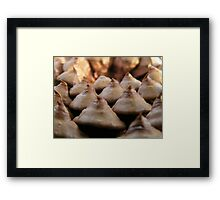 Mystery item, Solved!!! Framed Print