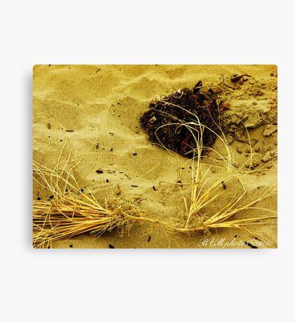 Beach Brush Canvas Print