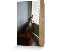 Mallory at the door Greeting Card