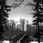 Bridge Over Frozen Water by Joseph T. Meirose IV
