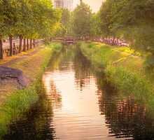 Golden Light - The Grand Canal, Dublin, Ireland by Mark Richards