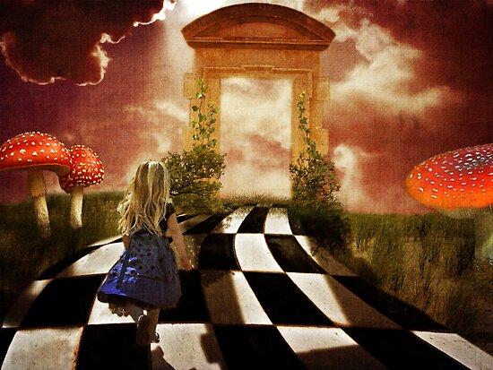Alice in a Hurry by Erica Yanina Lujan