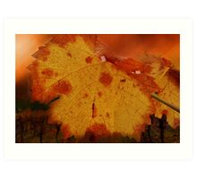 Autumn Leaf in the Vineyard Art Print
