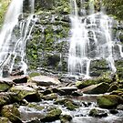Russell Falls, Tasmania by Mick Duck