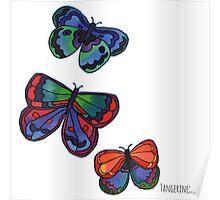 3 Bold Butterflies Poster