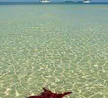 Bahama Scene by Leon Heyns