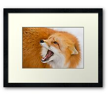Talkback Framed Print