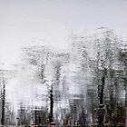 Lake ontario reflection! by sendao