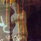 Defacing Venus by Vanessa Barklay