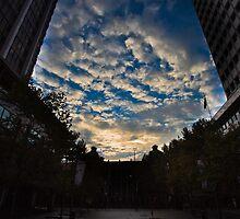 Martin Place Sydney by David Petranker
