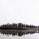 Winter Morning Fog by spiritoflife