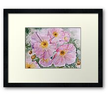Delicate pink poppies Framed Print