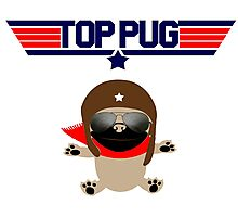 Top Pug Dog Photographic Print