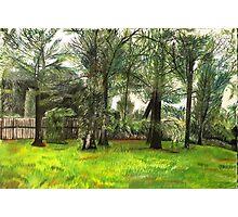 An Original Pastel Landscape Drawing Photographic Print