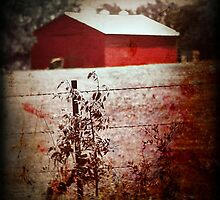 Murder in the Red Barn by Trish Mistric