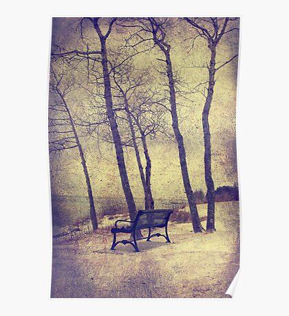 Forest around Poster