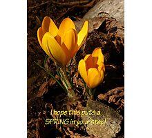 SPRING crocus card Photographic Print