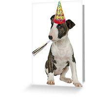 Bull Terrier Birthday Greeting Card