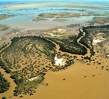 Darling River Flood Plains by Ruth Anne  Stevens