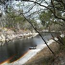 Lazy Suwannee River by Sherry Lessman