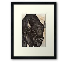 The Black Buffalo Framed Print
