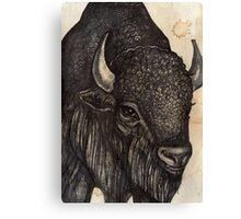 The Black Buffalo Canvas Print
