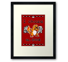 I chose 004 Framed Print