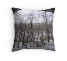 Naturally Framed Throw Pillow