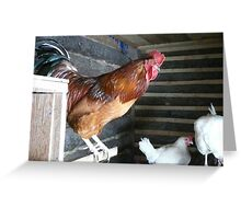 Welcome To My Chook Shed Greeting Card