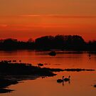 Sunset At Bosham by Jane Burridge