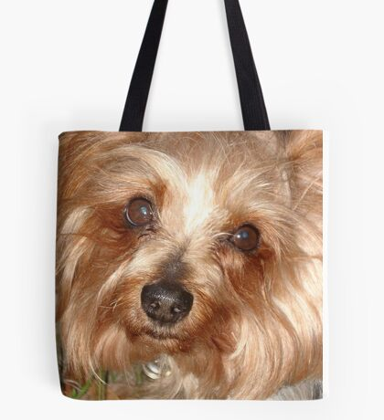 LEFTY, MARCH 17, 2011 Tote Bag