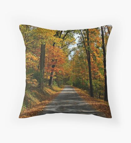 A Perfect Autumn Day Throw Pillow
