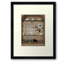 My cabinet of curiosities  Framed Print