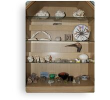 My cabinet of curiosities  Canvas Print