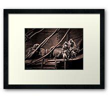 Channeling Dorothea Lange in Indonesia Framed Print
