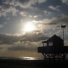 Bethells beach  by chrissy mitchell