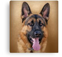 Good Boy Canvas Print