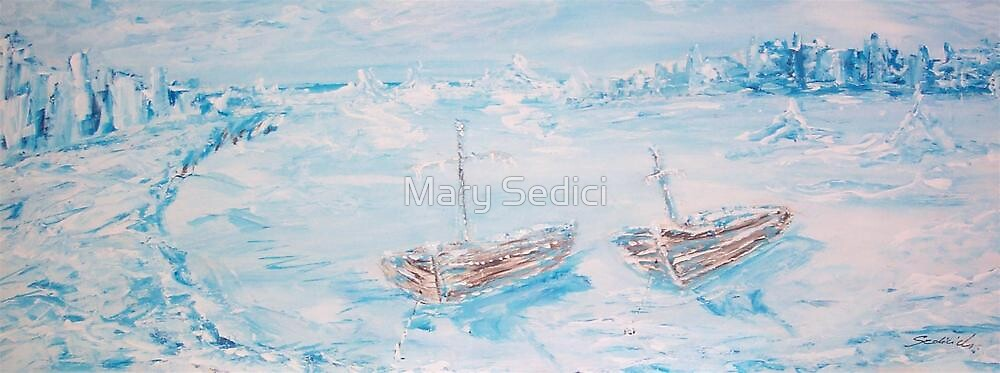 Arctic Blue  by Mary Sedici