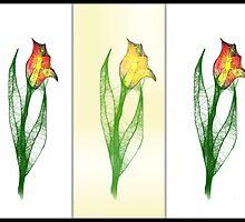 Scribbler Drei Tulips by RosiLorz