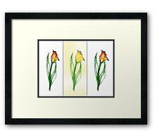 Scribbler Drei Tulips Framed Print