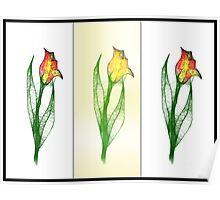 Scribbler Drei Tulips Poster