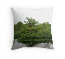 Beaver Swamp  Throw Pillow