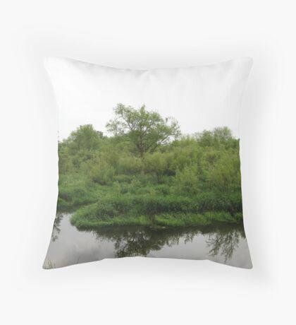 Beaver Swamp  Throw Pillow