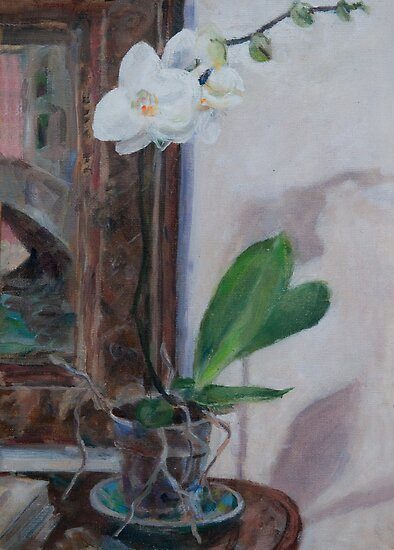 orchid two by Peter Lusby Taylor