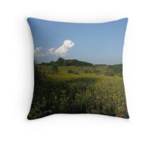 Governor Dodge Prairie  Throw Pillow