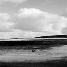 Leadburn Panorama 1 (Near Peebles) by photobymdavey