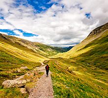 Helvellyn Trail (Borderless) by Richard Lam