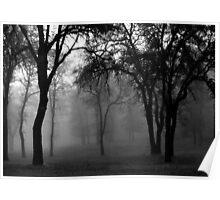 Oaks in the Mist Poster