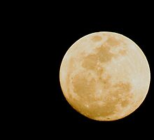Almost supermoon by Larry  Grayam